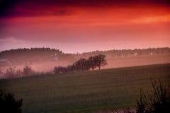 Mistige zonsondergang Royalty-vrije Stock Foto's
