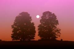 Mistige zonsopgang royalty-vrije stock afbeeldingen