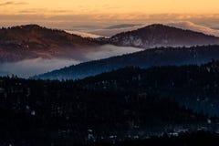 Mistige Zonsopgang in Altijdgroen, Colorado Stock Afbeelding