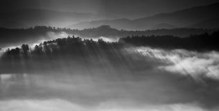 Mistige Zonsopgang op Uitlopersbrede rijweg met mooi aangelegd landschap Royalty-vrije Stock Foto