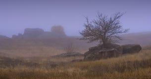 Mistiries有雾的谷 免版税图库摄影