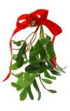 mistletoe изолированный рождеством Стоковая Фотография