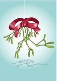 mistletoe рождества Стоковая Фотография RF