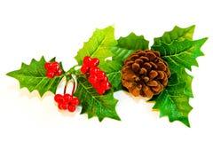 mistletoe украшения Стоковая Фотография