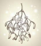 mistletoe чертежа рождества ветви иллюстрация вектора