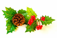 mistletoe декора Стоковые Фотографии RF