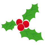 Mistletoe. royalty free stock images