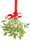 Mistletoe. Bunch hanged with red ribbon, isolated on white