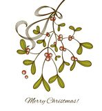 Mistletoe. Hanging mistletoe tied with a ribbon Stock Images