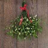 mistletoe Fotografia de Stock