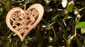 mistletoe Immagini Stock