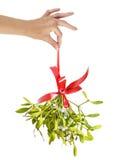 mistletoe Imagem de Stock Royalty Free