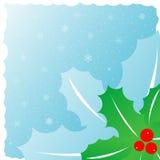 mistletoe Стоковое Изображение RF