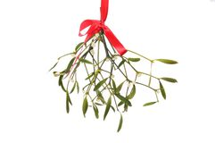 Mistletoe against white. Mistletoe hanging from a red ribbon isolated against white royalty free stock photo
