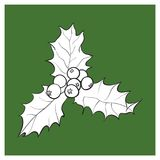 Mistletoe branch with leaves and berries. Mistletoe black and white branch with leaves and berries, holly berry Christmas decoration element, sketch vector Stock Photos