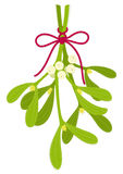 Mistletoe bouquet Royalty Free Stock Images