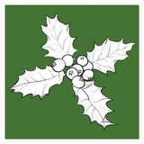 Mistletoe branch with leaves and berries. Mistletoe black and white branch with leaves and berries, holly berry Christmas decoration element, sketch vector Royalty Free Stock Photos