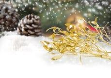 Mistletoe branch Royalty Free Stock Photography