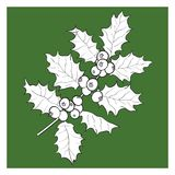 Mistletoe branch, twig with leaves and berries. Mistletoe black and white branch, twig with leaves and berries, Christmas decoration element, sketch vector Royalty Free Stock Photo