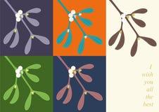 Mistletoe branchlets Stock Image