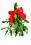 Mistletoe bunch. Decorated for christmas, stylized image Royalty Free Stock Photo