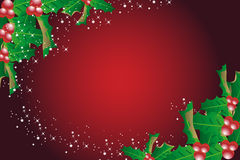 Mistletoe Christmas Background Royalty Free Stock Images