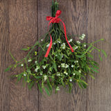 Mistletoe. Christmas mistletoe plant with berries tied in a bunch with a red bow over oak background stock photography