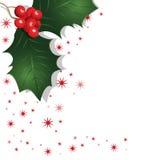 Mistletoe. Christmassy Mistletoe with red stars as background Stock Photo