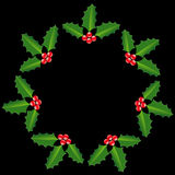 Mistletoe circle background Royalty Free Stock Images