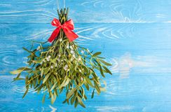 Mistletoe close up. Branch mistletoe close up on wood desk. Happy new year stock photography