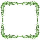 Mistletoe frame Stock Photos