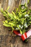 Mistletoe herb Stock Photo