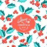 Mistletoe holiday card Royalty Free Stock Photo