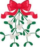 Mistletoe isolated over white Royalty Free Stock Photography