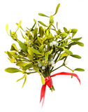 Mistletoe. Isolated on a white background stock photo