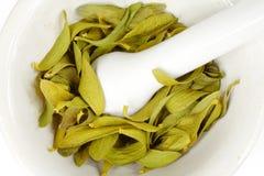 Mistletoe and mortar Royalty Free Stock Image