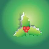 Mistletoe peel off from green paper background Stock Photos