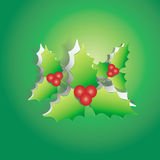 Mistletoe peel off from green paper background Stock Photo