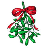 Mistletoe with red bow. Christmas decor plant. Hand drawn vector Stock Images