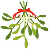Mistletoe. With red bow and curly ribbon, isolated on white background vector illustration
