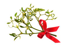 Mistletoe with red ribbon Stock Photo