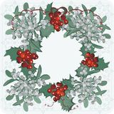 The mistletoe red and white Royalty Free Stock Photo