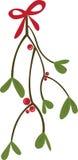 Mistletoe Royalty Free Stock Image