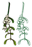 Mistletoe set. Hand drawn doodle, sketch in pop art style, vector, Mistletoe set Stock Photos