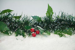 Mistletoe in Snow. For Christmas stock image