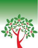 Mistletoe tree  Royalty Free Stock Photos