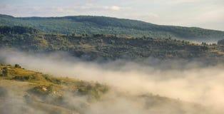 mistmorgon Arkivfoto