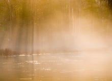 mistmorgon Arkivbild