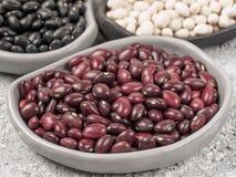 Misto dei fagioli neri, rossi e bianchi Fotografia Stock
