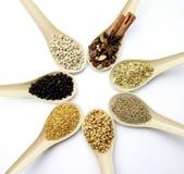 Misto delle spezie e delle erbe in un cucchiaio Immagini Stock Libere da Diritti